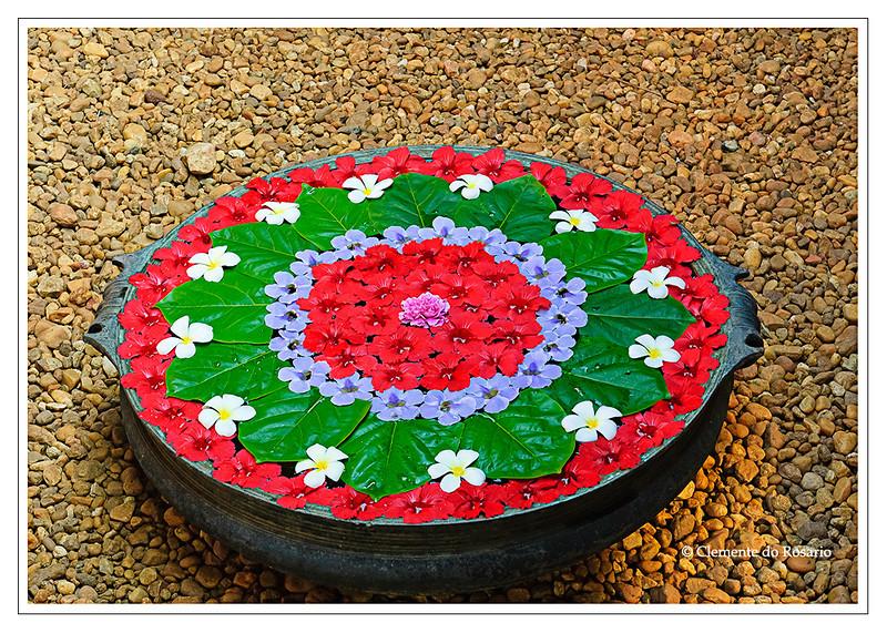 Onam Pookalam floral design in Kerala, India<br /> File Ref: Kerala-2006 117R