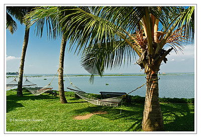 Hammocks on the shores Vembanad Lake, Kumarakom Lake Resort,Kumararkom,Kerala,India File Ref: Kerala-2006 131R