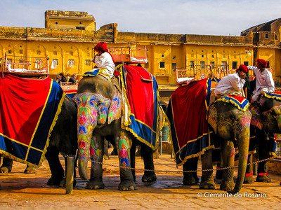 Amer Fort, Jaipur,Rajasthan,India