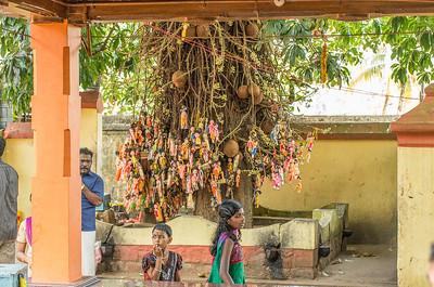 Børneønsketræ