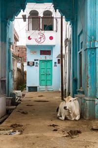 Udaipur Street Scene I