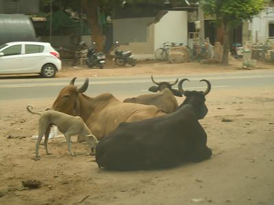 India 2012-9