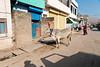 India-2774