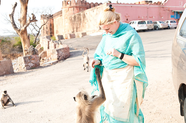 India-2556
