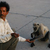 """The monkey man"" on the road to Agra from New Delhi."