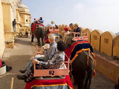 Elephant ride to Amber Fort