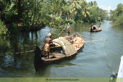 The backwaters of Allepey, Kerala