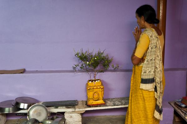 India-3010