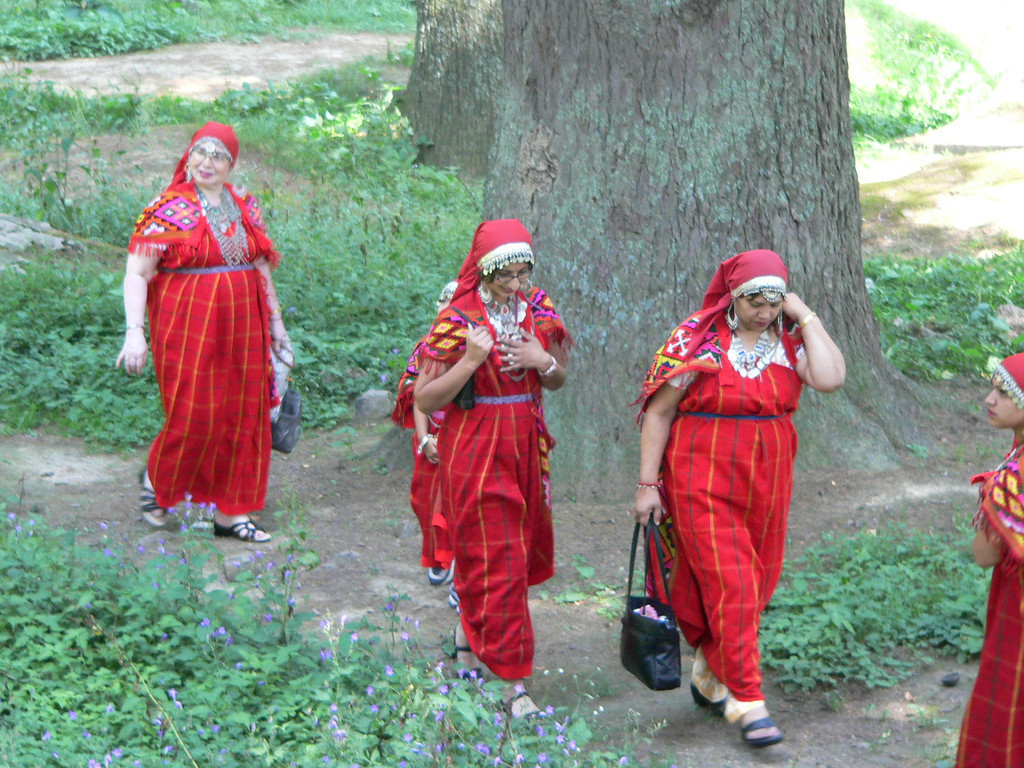 Tourists dressed in traditional costumes, Manali.