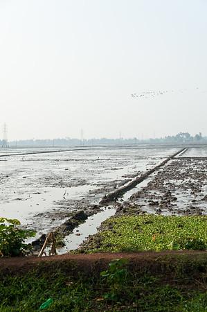 India-593
