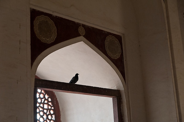 India-1585