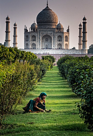 Taj Mahal from Mehtab Bagh.