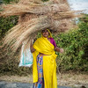 Rural woman with a load of straw walking along the side of the road.