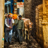 Random shot in Varanasi. Just as I was photographing the cow in the narrow street, a family carrying a deceased relative came walking by.