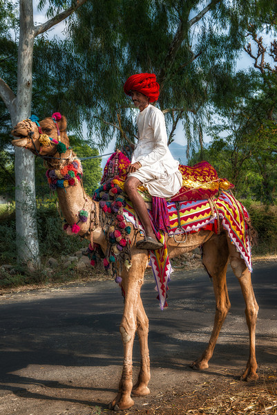 A rural resident and his camel decorated for Divali. He was on his way into town for the holiday. The large red turban and white clothing were very popular for men in this particular region.