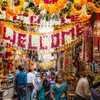 We took a bicycle rickshaw ride through this shopping area in Delhi, call Chandni Chowk. This street had multiple shops decorated for Divali, and were selling supplies and decorations for weddings, as this time of the year is big for wedding ceremonies.