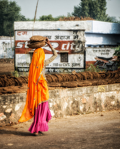 Woman carrying dried cow dung patties to be used as fuel for cooking in a rural area outside Jodhpur.
