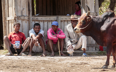 Weekly Market, Along Route 10, Androy Region, Madagascar
