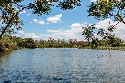 Lake Alarobia, Antananarivo, Madagascar