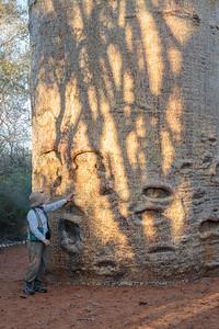 Reniala Spiny Forest, Ifaty, Madagascar