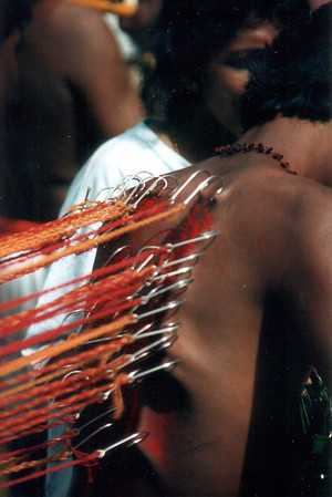 IndoMalayThai1995_96