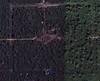 Satellite image of Preah Khan Temple. The map pins show my approach route through the jungle.