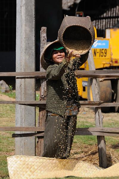 South of Phumi Tnaot Chum on the way to Tonlé Sap Lake.