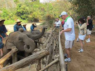 Arnie Kaston feeding the elephants.