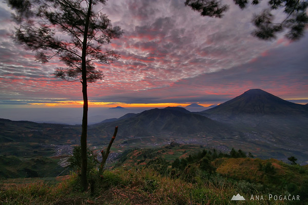 Views over the Dieng Plateau at sunrise
