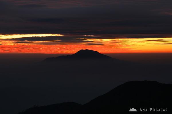 A sunrise hike