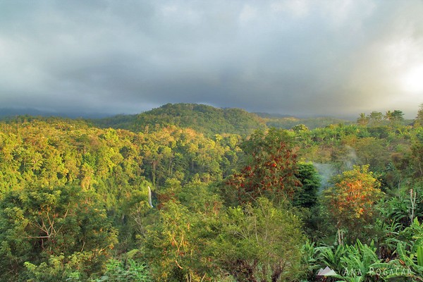 Sindamg Gila Waterfall near Senaru village