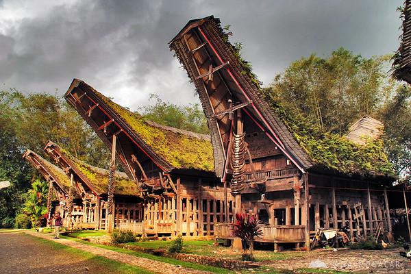 Typical houses in Tana Toraja