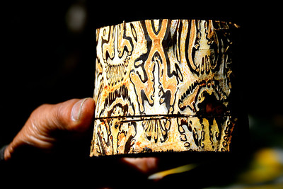 The 'batik tree' bark which has these beautiful natural patterns - side view