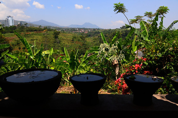 The view from our table at Warung Lela