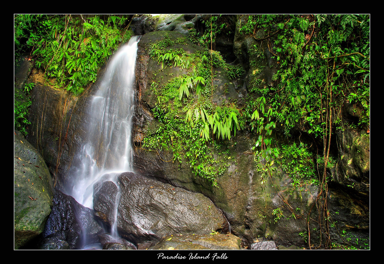"This waterfall was located on ""Paradise"" Island, a short hike through the jungle brought us to this nice little area."