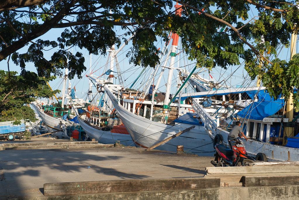 IND Sulawesi -15
