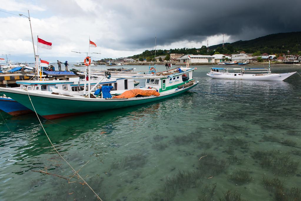 IND Sulawesi -1433