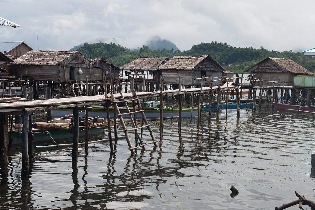 IND Sulawesi -967