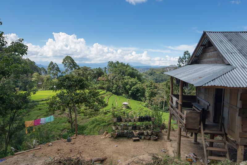 IND Sulawesi -242