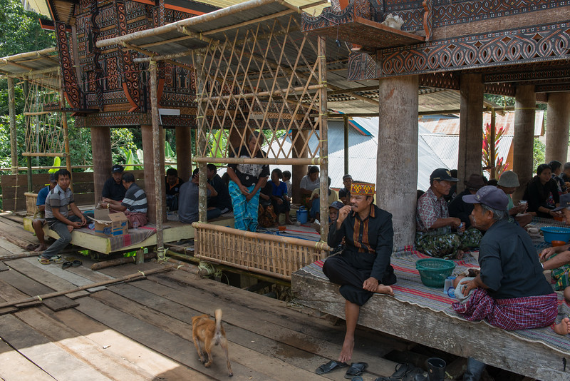 IND Sulawesi -385
