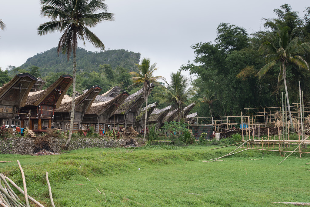 IND Sulawesi -179