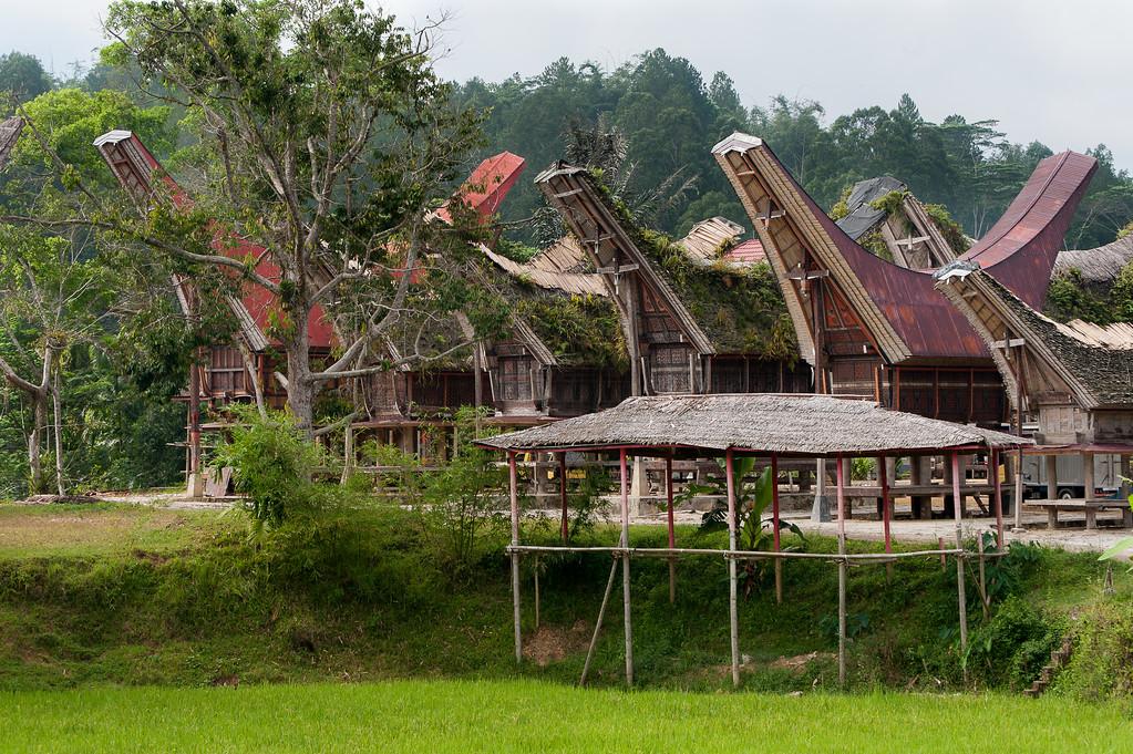 IND Sulawesi -69