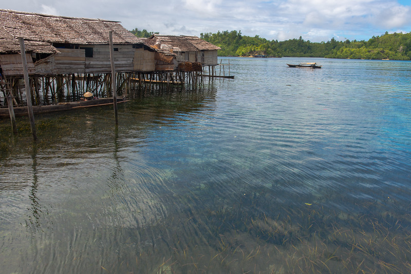 IND Sulawesi -954