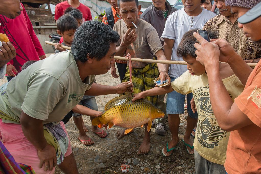 IND Sulawesi -309