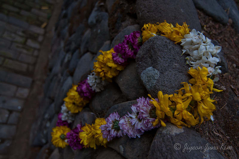 Lei on the rock