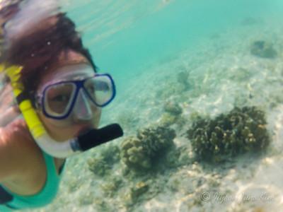 Snorkeling in Rinca Island