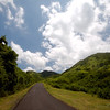 A beautifully paved road leads up into the hills of Lombok.