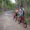 Kids ride their bike alongside Pulau Weh's unique organic fencing technique.
