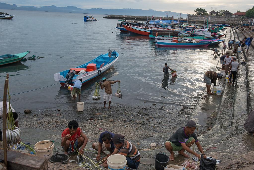 IND Timor _0033