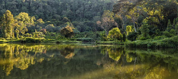 Situ Gunung Lake